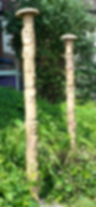 Rainforest Totem Poles.png
