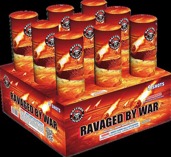 Ravaged By War