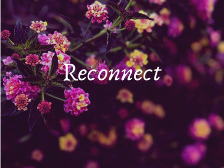Reconnect with the Nature and Yourself