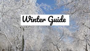 Ayurveda Winter Guide