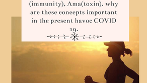 Concepts of Immunity in Ayurveda