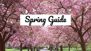 Ayurveda Spring Guide