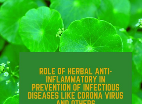 Herbal Anti-Inflammatory for a Healthy Immune System