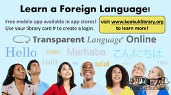 Databases: Transparent Language