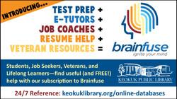 Database: Brainfuse