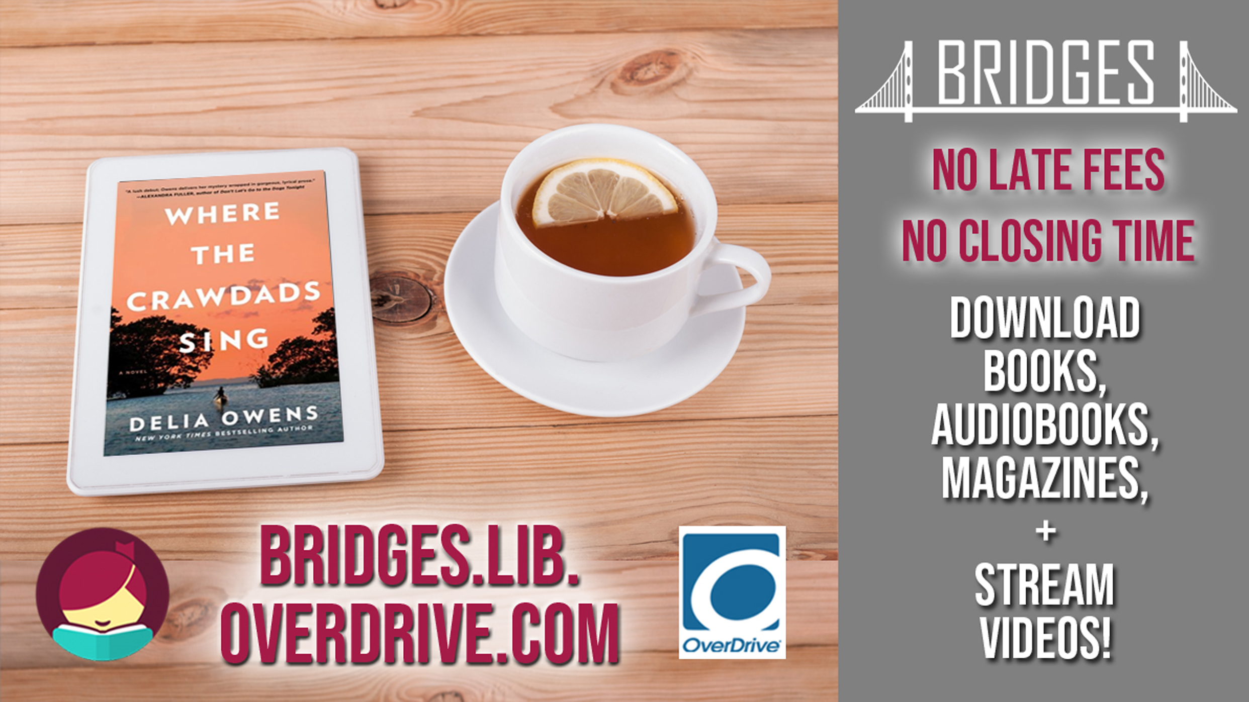 OverDrive ebooks & Audiobooks!
