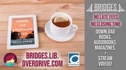OverDrive ebooks & Audiobooks!