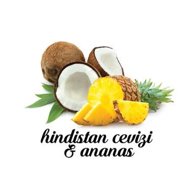 Hindistan-Cevizi-Ananas.jpg