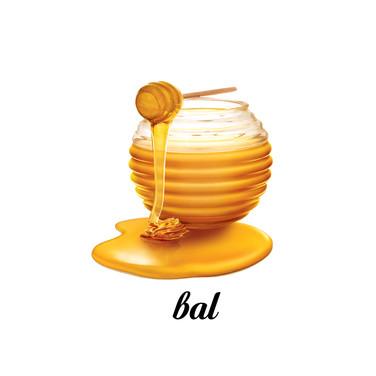 Bal.jpg