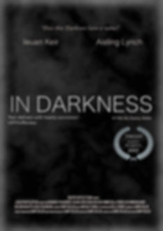 Poster of the Film In Darkness