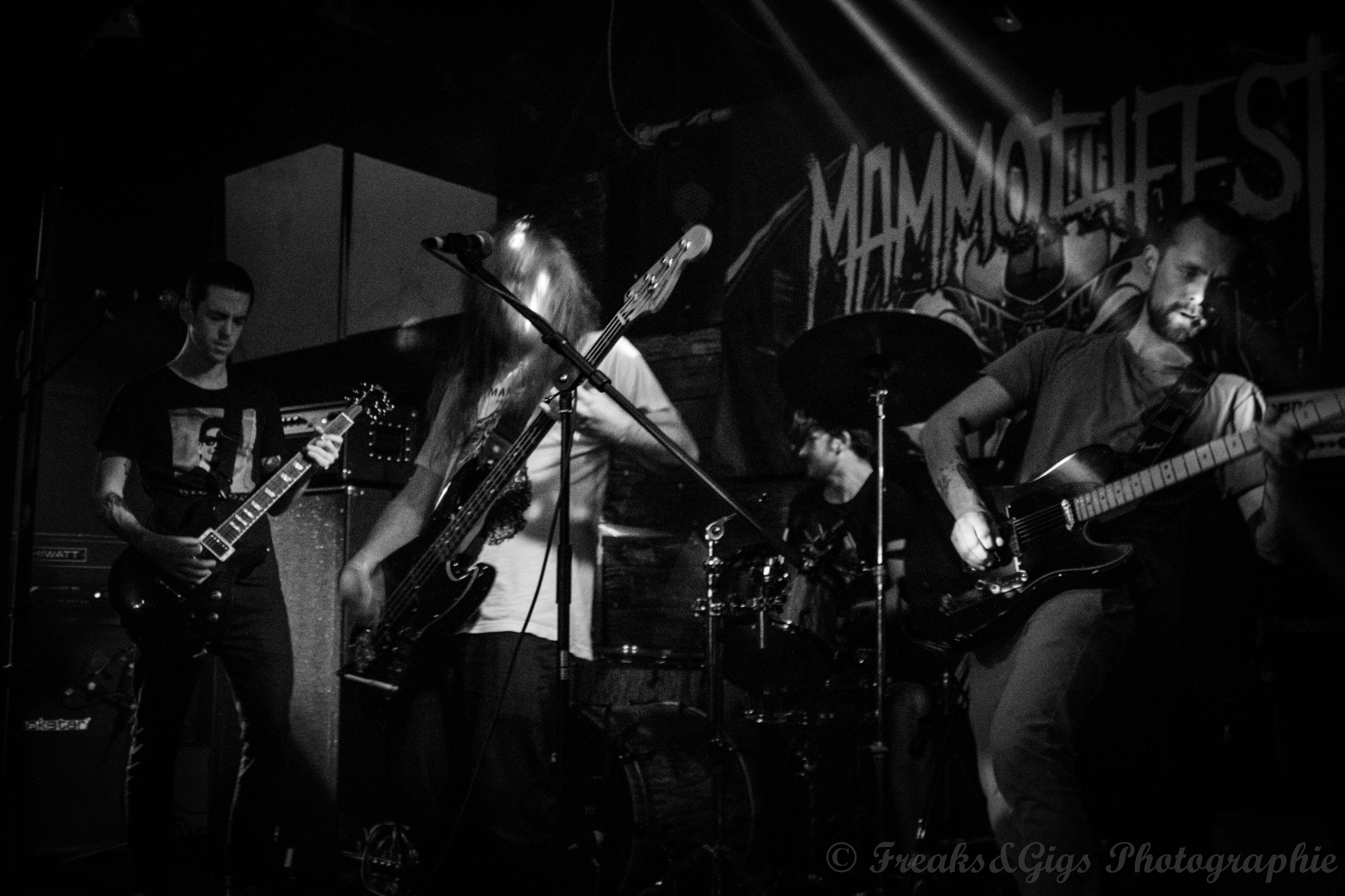 [Mammothfest 2017] Wren