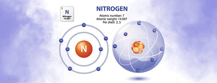 Copy of nitrogen blanket 1.0.jpg