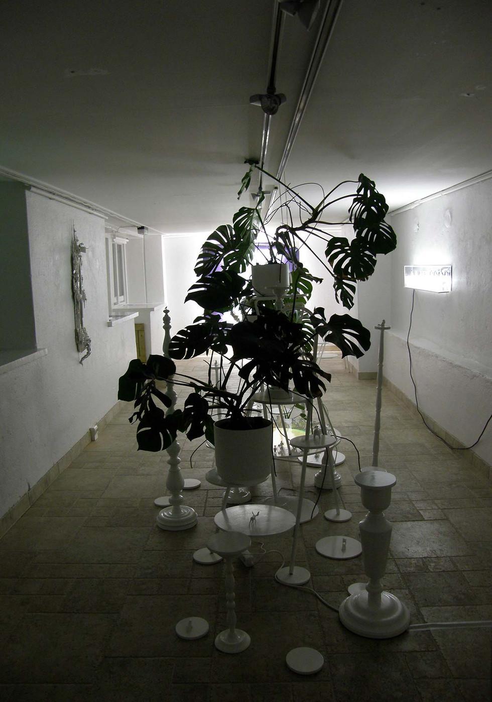 Animal-Planet-näyttely-Galleria-Voima-K