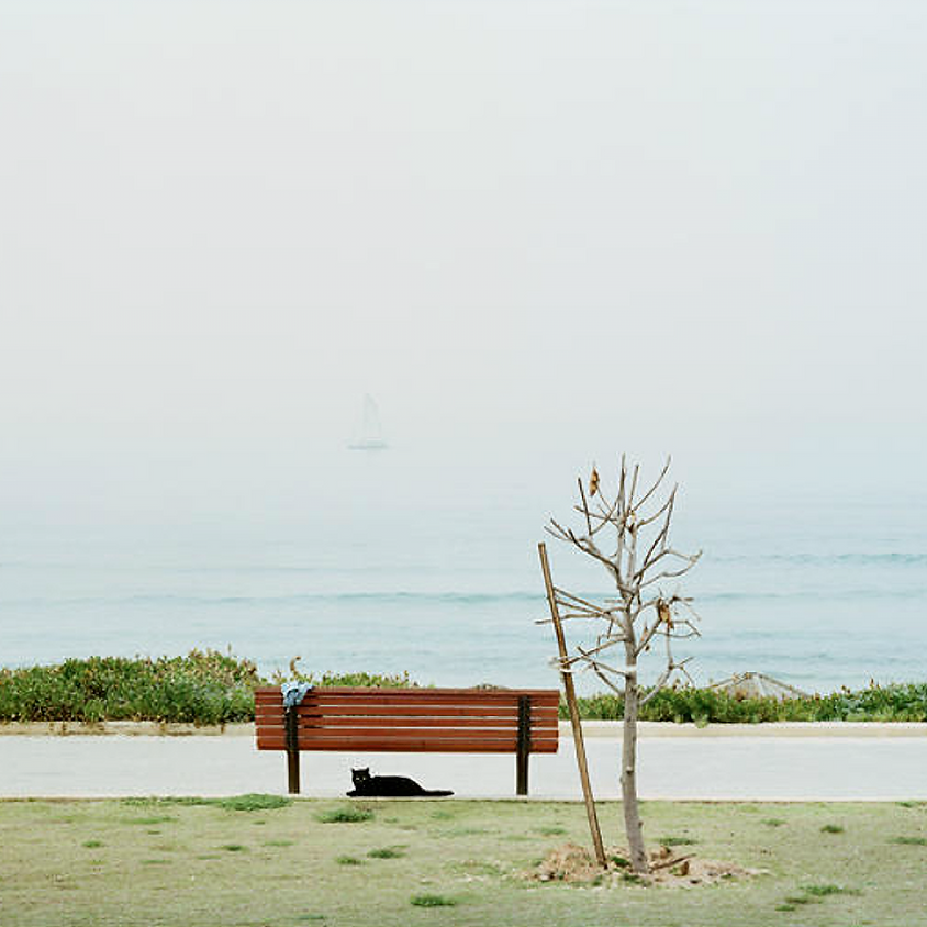 מודעות צילומית - סדנת תשומת לב אנלוגית
