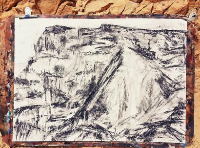 יואב בראל: לצייר את מצדה