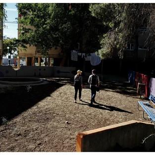 סיור בגינון הבטון