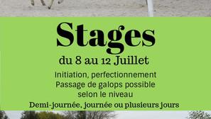 Stages du 8 au 12 Juillet