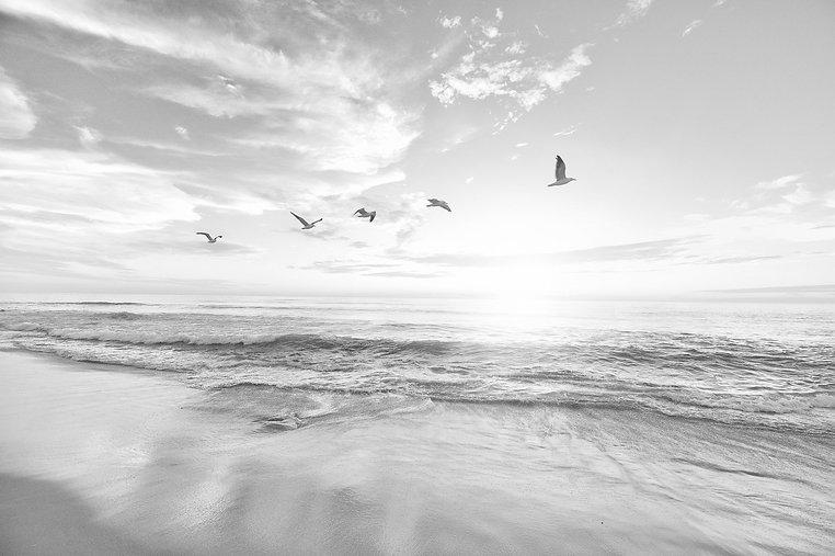 beach-1852945_1920_edited.jpg