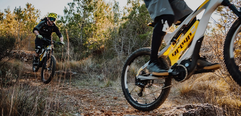 Greyp E-Bike NZ
