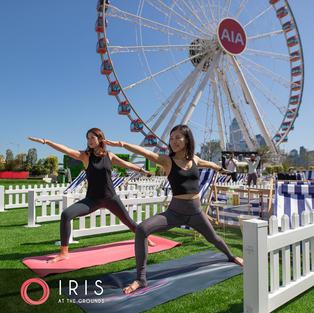 IRIS At The Grounds