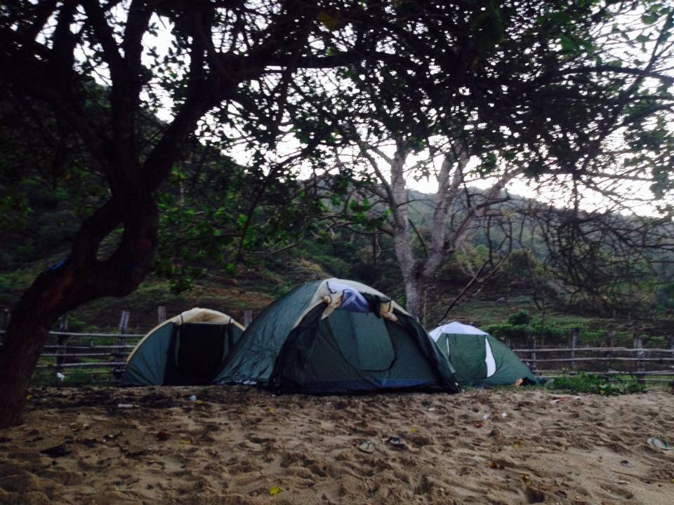 Our campsites need maintaining