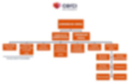 Organograma Cercimb.jpg