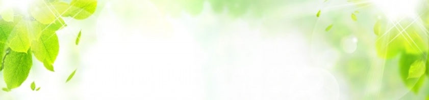 3185650_s-2.jpg