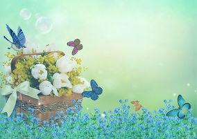 flowers-4083439_640.jpg