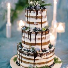 Naked Cake Blaubeere – Eukalyptus