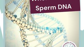 When To Check Sperm DNA Fragmentation.