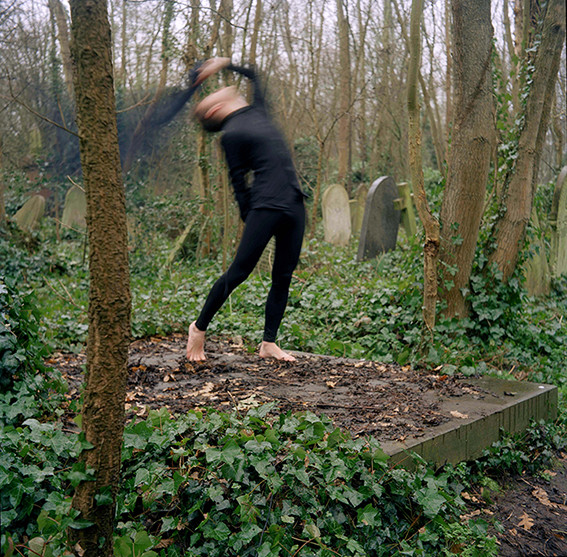 Danse Macabre Series