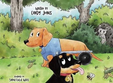 Sausage Dog Days Children's Book is still available