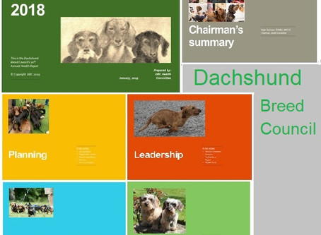 Dachshund Breed Council Annual Health Report for 2018