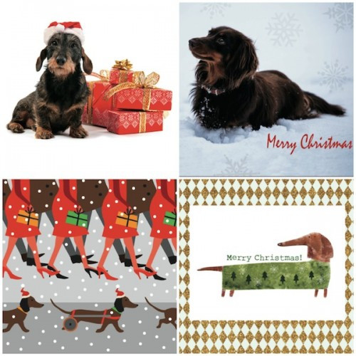 Have you got your Dachshund-themed Christmas Cards yet? Support IVDD research too.