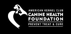 CHF Canine Webinars