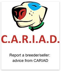 Report_a_breeder.png
