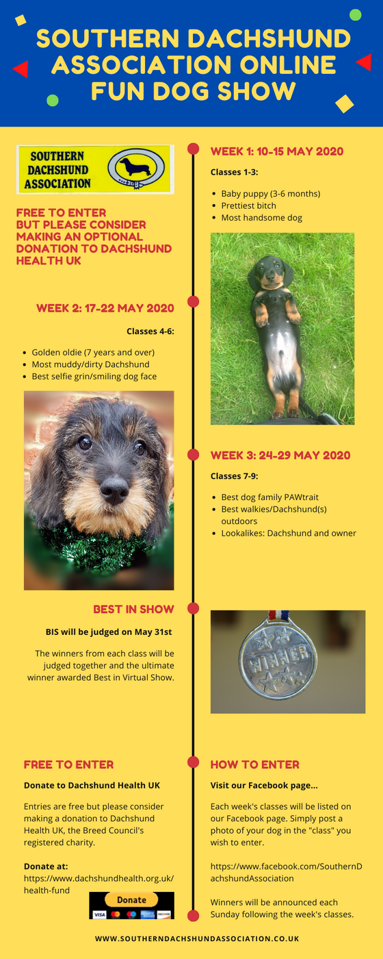 Online Fun Dog Show raising funds for Dachshund Health UK