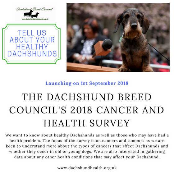 DachsLife 2018 - Dachshund breed health, cancer and cause of death survey launch - 1st September 201