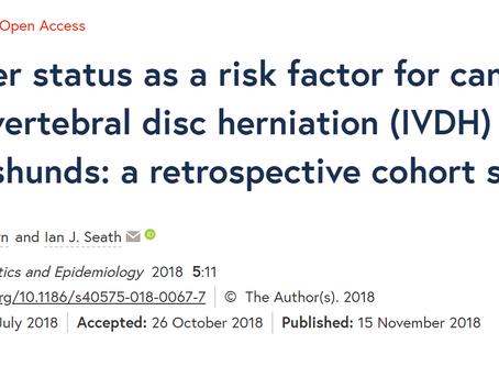 Neuter status as a risk factor for Dachshund intervertebral disc herniation