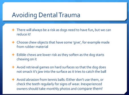 Avoiding dental trauma - what makes a happy mouth?