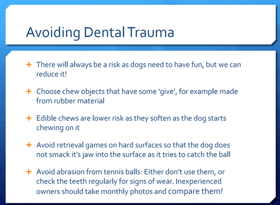 Avoiding dental trauma - what makes a happy mouth?