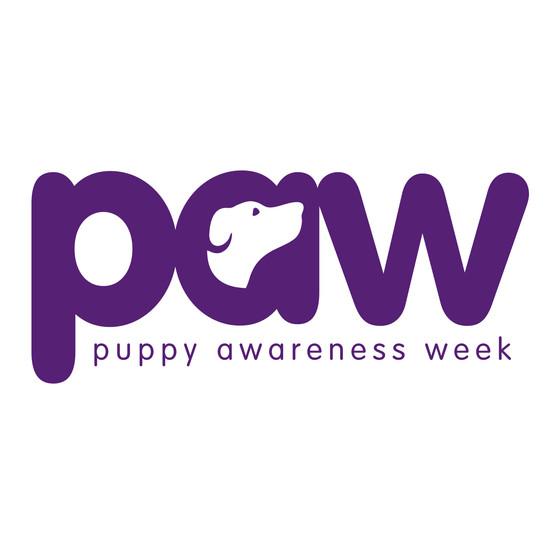 It's Puppy Awareness Week 4-10 September 2017