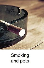 Smoking and pets.jpg