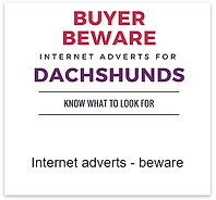 Internet_adverts.png