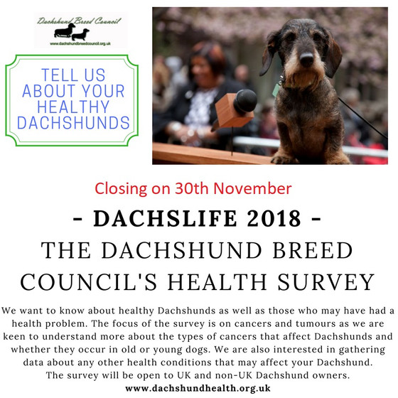 DachsLife 2018 – health survey closes on 30th November