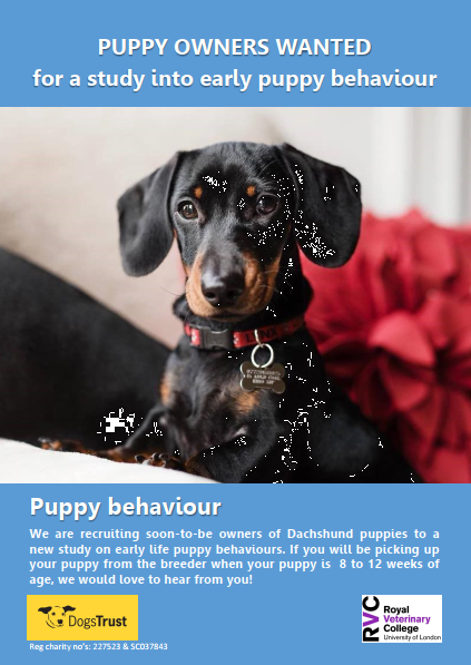 New RVC study into early puppy behaviour – can you help?