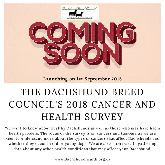Coming soon - Dachshund Breed Council Cancer & Health Survey 2018