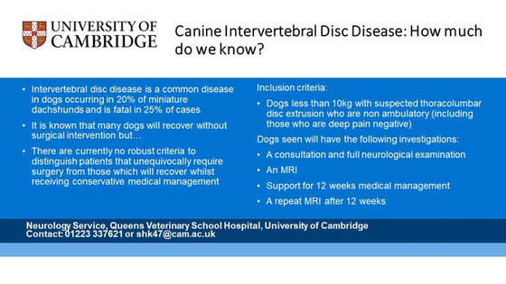 Canine Intervertebral Disc Disease: how much do we know?