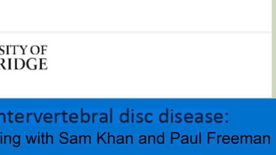 Video: Q&A on Intervertebral Disc Disease (IVDD)