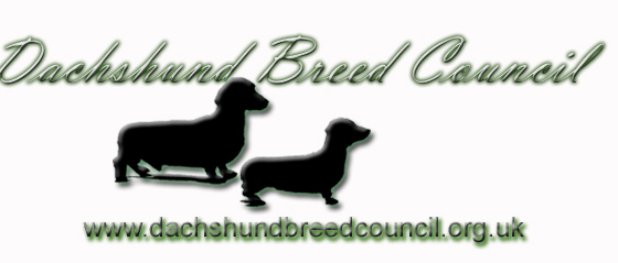 Welcome to the Dachshund Breed Council's new Health website